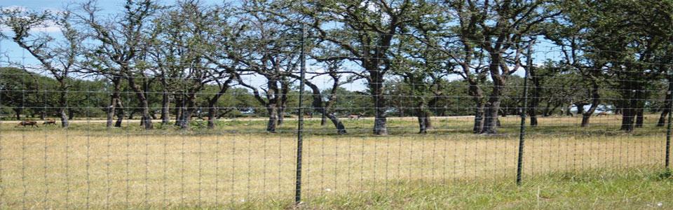 Deer Fence in field